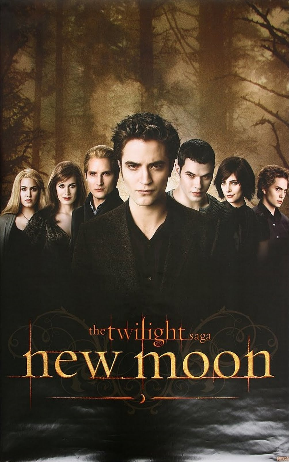edward cullen new moon poster