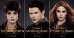 Alice, Emmett, and Rosalie (Cullens)