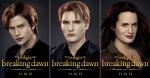 Jasper, Carlisle, and Esme (Cullens)